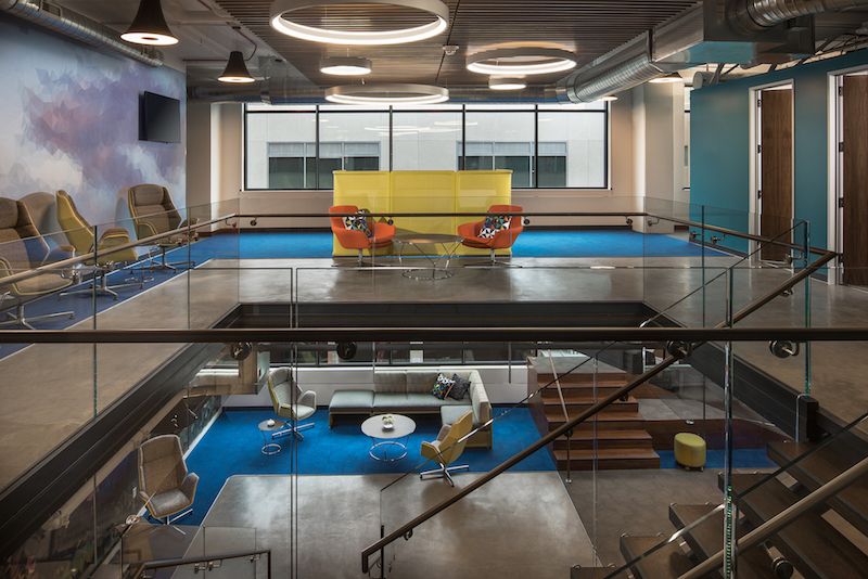 elsy studios designs new integrated boulder office space for netapp
