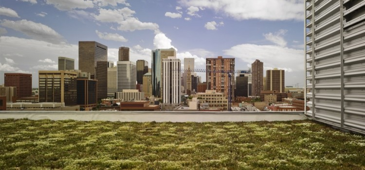 Denver Green Roof Initiative Meets Strong Opposition